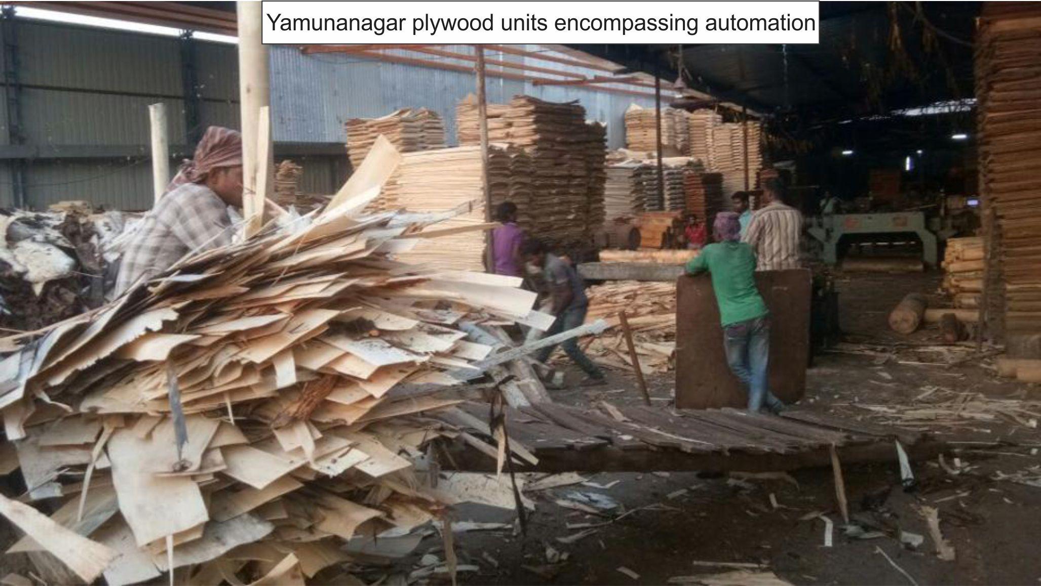 Yamunanagar plywood units encompassing automation